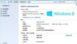 win8激活工具(win8 Activation)免费永久激活版
